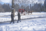 Horse Carriage Ride and Sunday Walkers in Central Park  Manhattan  Ny after Winter Snowstorm