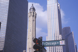 Old 1869 Chicago Water Tower on Michigan Avenue  Chicago  IL