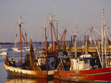 Fishing Boats and Docks at Provincetown  Cape Cod  Massachusetts