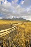 Last Dollar Ranch Road  Ridgeway  Colorado