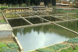 Aquaculture Fish Ponds in Kunming  People's Republic of China