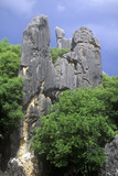 The Stone Forest Near Kunming  People's Republic of China