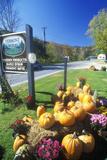 Pumpkins and Autumn Flower Arrangement Along Scenic Route 100  VT