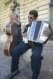 Street Musicians Outside the Palace of the Popes  Avignon  France