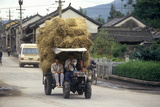 Tractor Hauling Hay in Dali  Yunnan Province  People's Republic of China