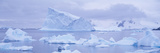 Panoramic View of Glaciers and Icebergs in Paradise Harbor  Antarctica