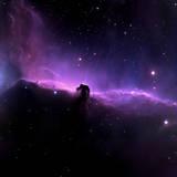 Horsehead Nebula Papier Photo par Willmac