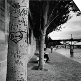 Graffiti on Tree Trunk