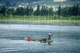 Fishing Boat on Erhai Lake in Dali  Yunnan Province  People's Republic of China