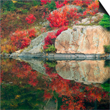 Autumn Colour Reflected in Murdock River  Sudbury  Ontario  Canada