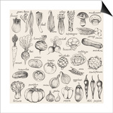Hand-Drawn Vegetables