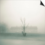 Foggy Morning Scene with Barn