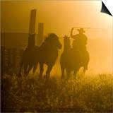 Silhouette of a Wrangler Roping Horses  Ponderosa Ranch  Seneca  Oregon  USA