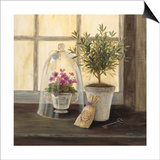 Lavender Window Garden