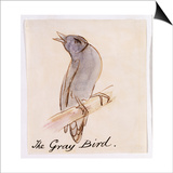 The Gray Bird