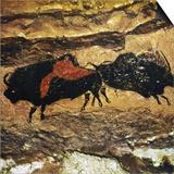 Cave Art: Bison