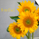 Smile: Sunflower Bouquet