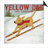 Yellow Dog Ski Co