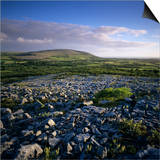 Limestone Pavement  the Burren  County Clare  Munster  Republic of Ireland  Europe