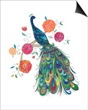 Splendid Peacock