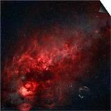 Constellation Cygnus with Multiple Nebulae Visible