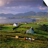 View over Allihies and Ballydonegan Bay  Beara Peninsula  County Cork  Munster  Republic of Ireland