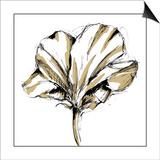Tulip Sketch IV