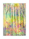 Color Forest V
