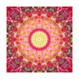 Entchanting Circle Mandala