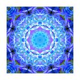 Blue Lavender Energy
