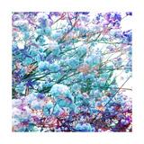 Ice Spring Tree