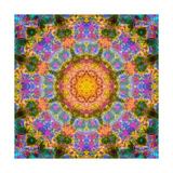 Forest Sun Mandala