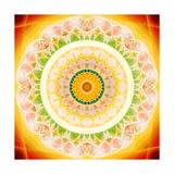 Shining Blossom Circle