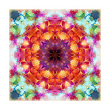 Flower Mandala 6395