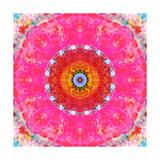 Pink Sun Mandala