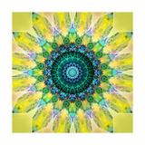 Sunny Earth Flower Mandala