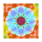 Color & Nature Lover Flower Mandala