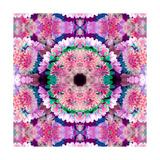 Feather Blossom Mandala