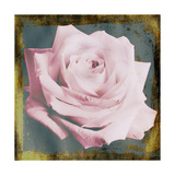 Soft Pink Rose Golden Framed