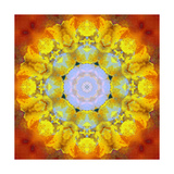 Sunny Earth Mandala