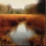 Sunlit Pond II