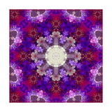 Violet Blossom Mandala