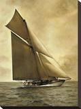 Caress  1895