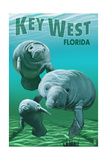 Key West  Florida - Manatees