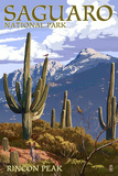 Saguaro National Park  Arizona - Rincon Peak