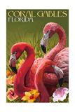 Coral Gables  Florida - Flamingos