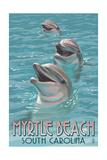 Myrtle Beach  South Carolina - Dolphins