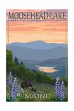 Moosehead Lake  Maine - Bears and Spring Flowers