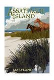 Assateague Island  Maryland - Horses and Dunes