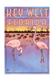 Key West  Florida - Flamingos